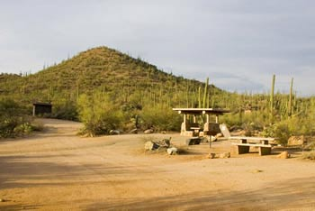 Picnic Area Saguaro National Park West Photo