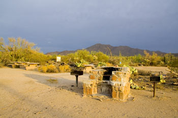 Cam-Boh Picnic Area Saguaro National Park West Picture