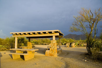 Cam-Boh Picnic Area Saguaro National Park West Photo