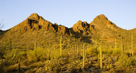 Gates Pass Tucson Arizona