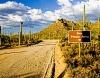 Bajada Loop Drive Saguaro National Park