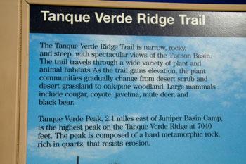 Javelina Picnic Area Tanque Verde Trailhead