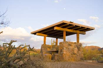 Signal Hill Picnic Area Saguaro National Park Photo