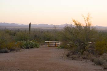 Signal Hill Picnic Area Saguaro National Park Picture